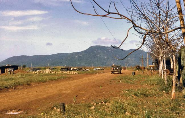 Bare rubber plantation at Nui Dat