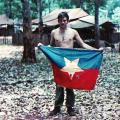 Captured North Vietnamese flag, 1971
