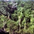 SAS troopers are winched up from the jungle