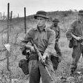 Patrolling near the Horseshoe, 1967