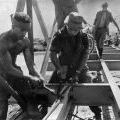 NEWZAD engineers working on bridge in South Vietnam, circa 1964