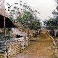 161 Battery tent lines at Nui Dat, circa 1968-1969