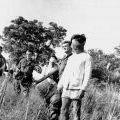 Australian soldiers escort Viet Cong prisoners, 1966