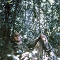 Jim Ellis resting during a patrol, 1970